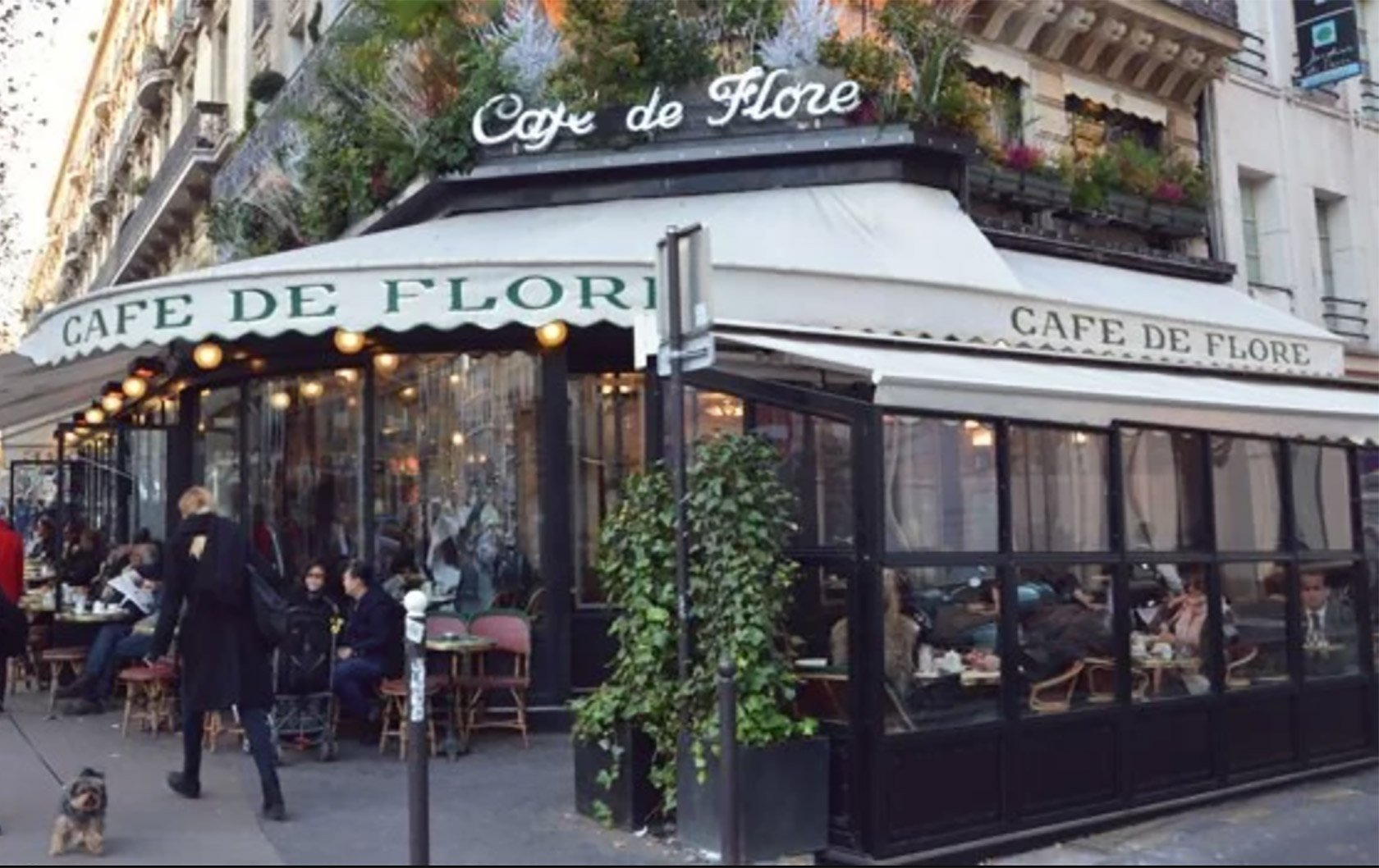 cafe-flore