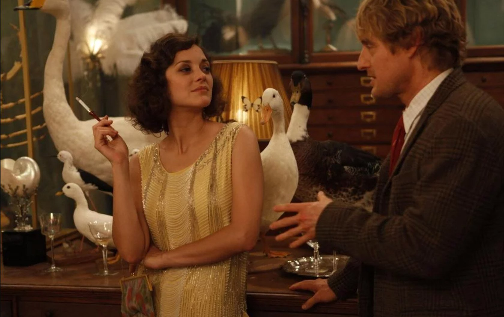 midnight-in-paris-deyrolle-scene