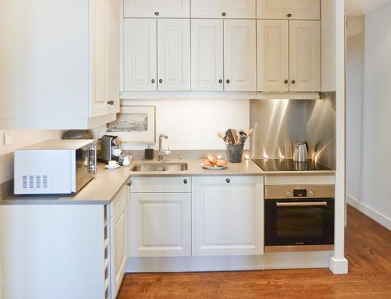 Newly remodeled kitchen in Paris Perfect vacation rental