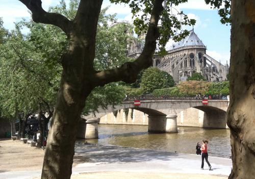 Paris Perfect Vacation Rental Near the Seine in Paris