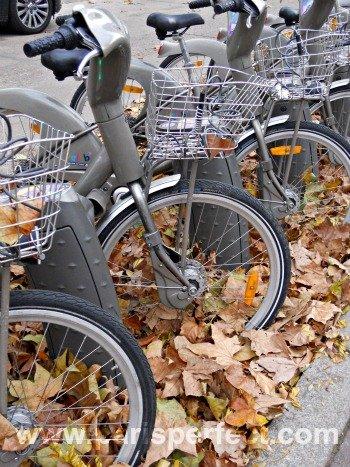 Autumn Bike Ride in Paris