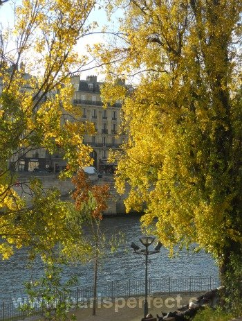 Paris Perfect Autumn Paris Seine River