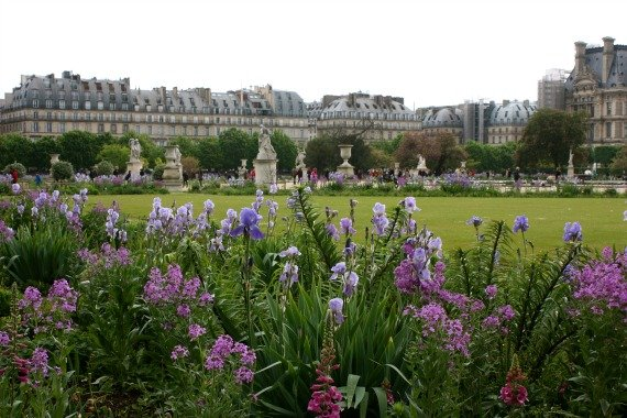 beautiful colours - Jardins Des Tuileries