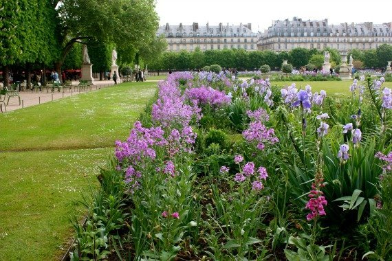 The Idyllic Jardin des Tuileries in Paris