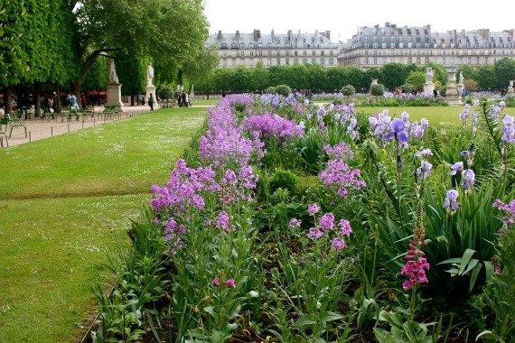 The Idyllic Jardin des Tuileries in Paris