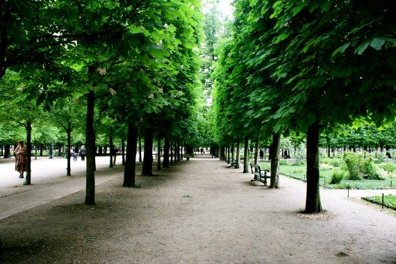 Jardin desTuileries Relax Run Paris Spring