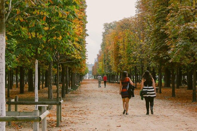 Autumn Walks in Paris