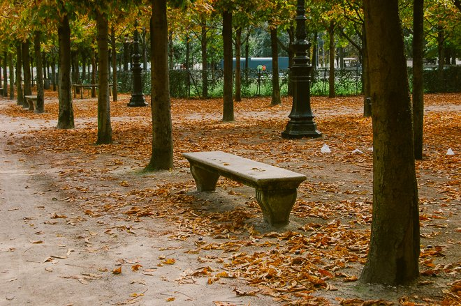 Autumn Things to Do in Paris