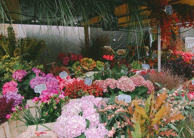 Marché Notre Dame of Versailles market produce fresh Paris flowers