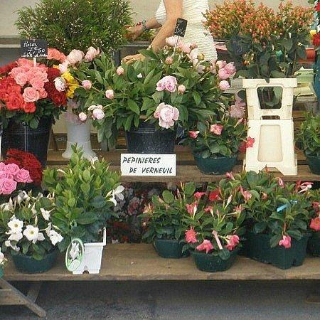 Paris Flower Shop 7