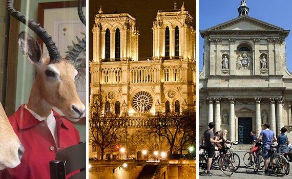 Paris Luxury Vacation Rental in Saint Germain