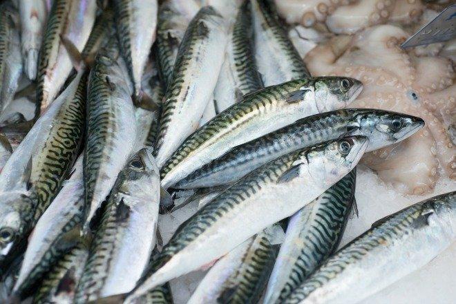 Sardines for sale at Paris Market