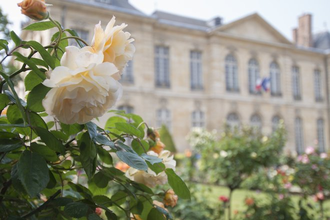Now is the Perfect Time to See the Rodin Museum Garden