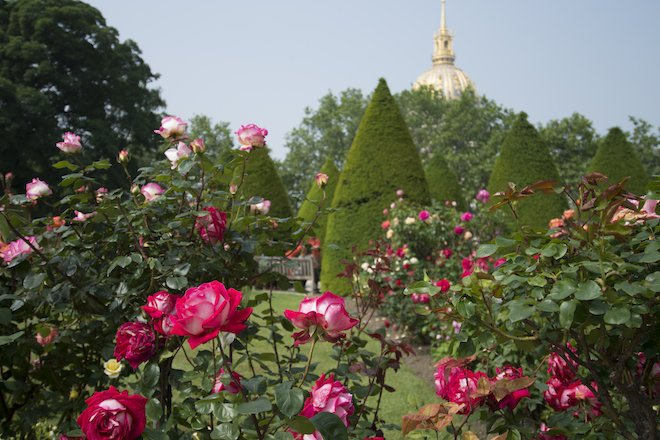 The rose garden in bloom in early summer, Rodin Museum, Paris, France