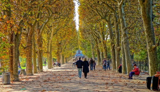 Falling for the City of Light: 5 Reasons to Visit Paris in Fall