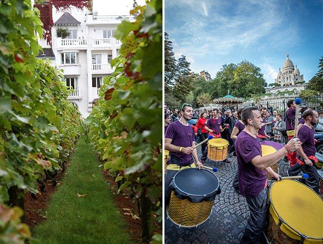 Montmartre-harvest