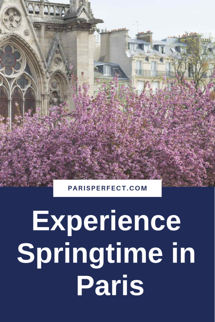 Springtime in Paris by Paris Perfect