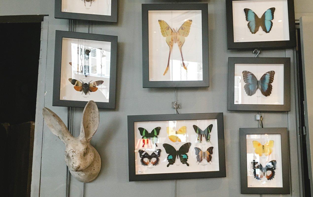 a quirky home décor boutique in the heart of the marais - paris