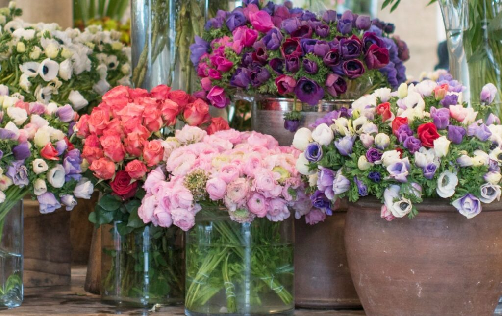 Mid-Winter Flowers to Buy in Paris | Georgianna Lane for Paris Perfect