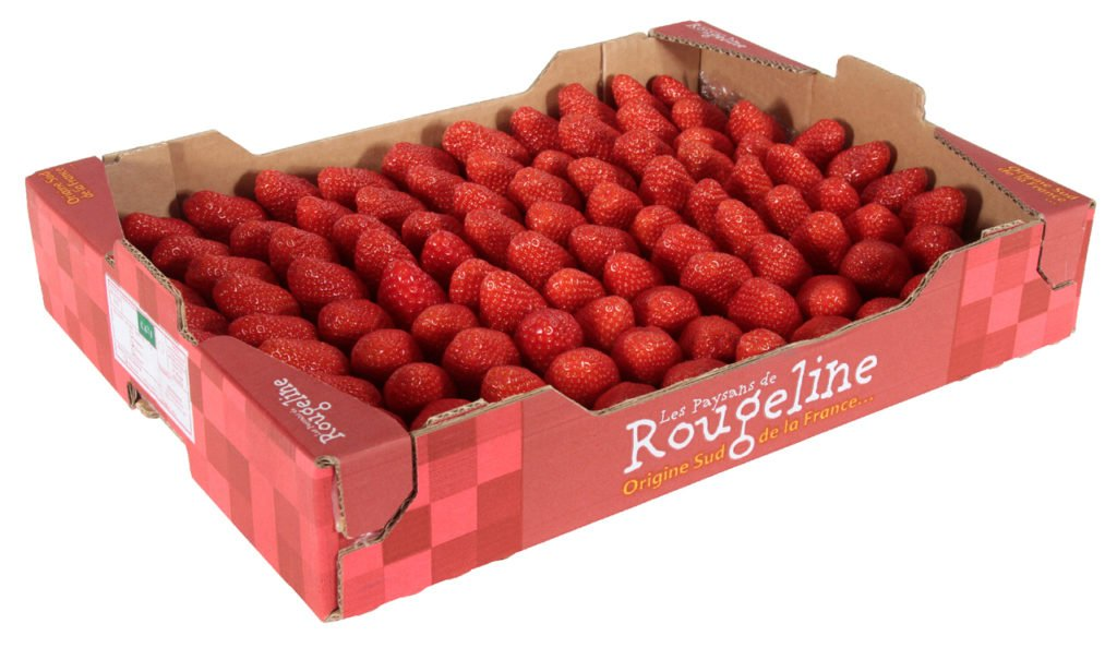 best strawberries in France