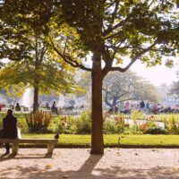 Tuileries Gardens Fall