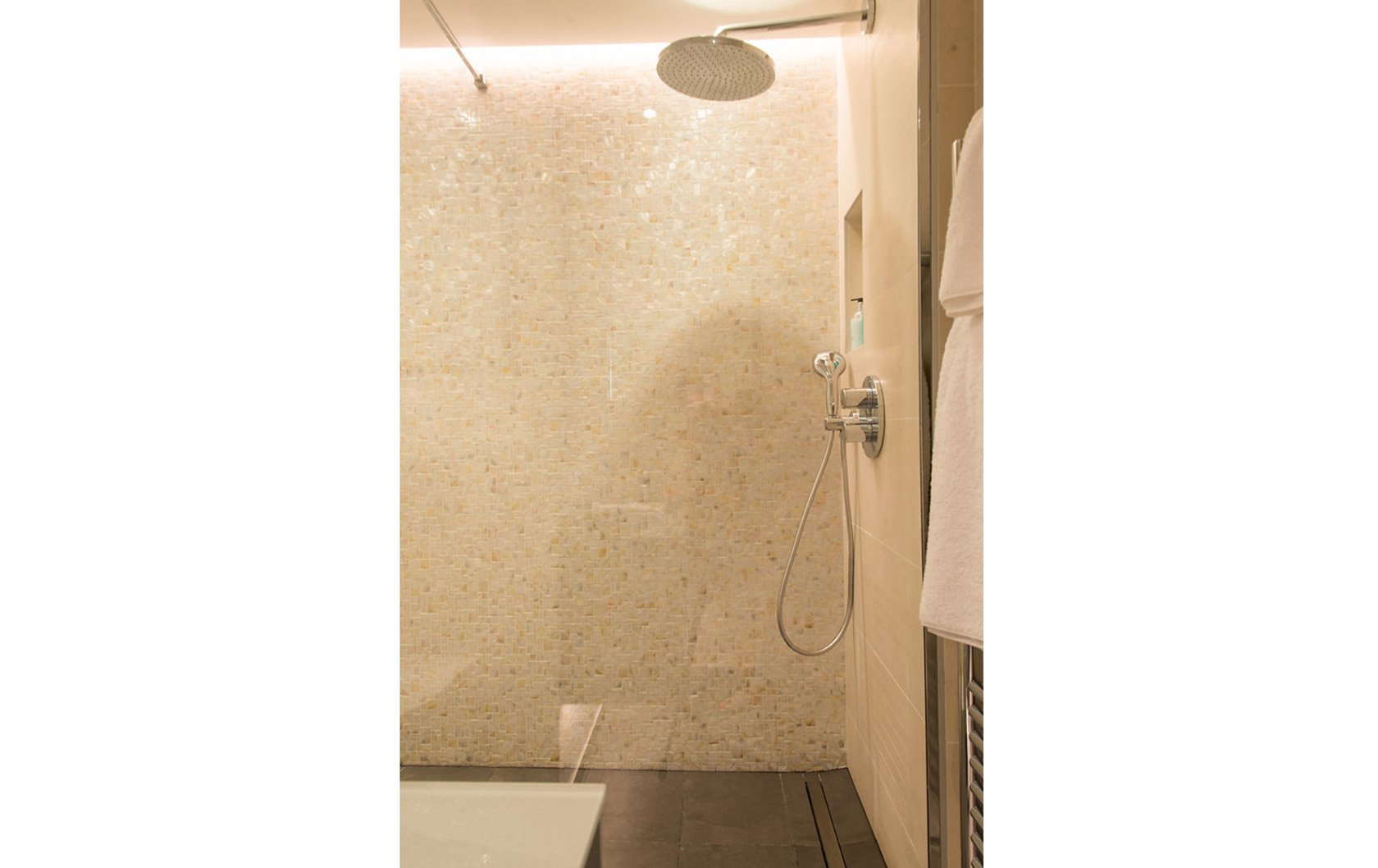 7c2-New-Merlot-master-bathroom-shower