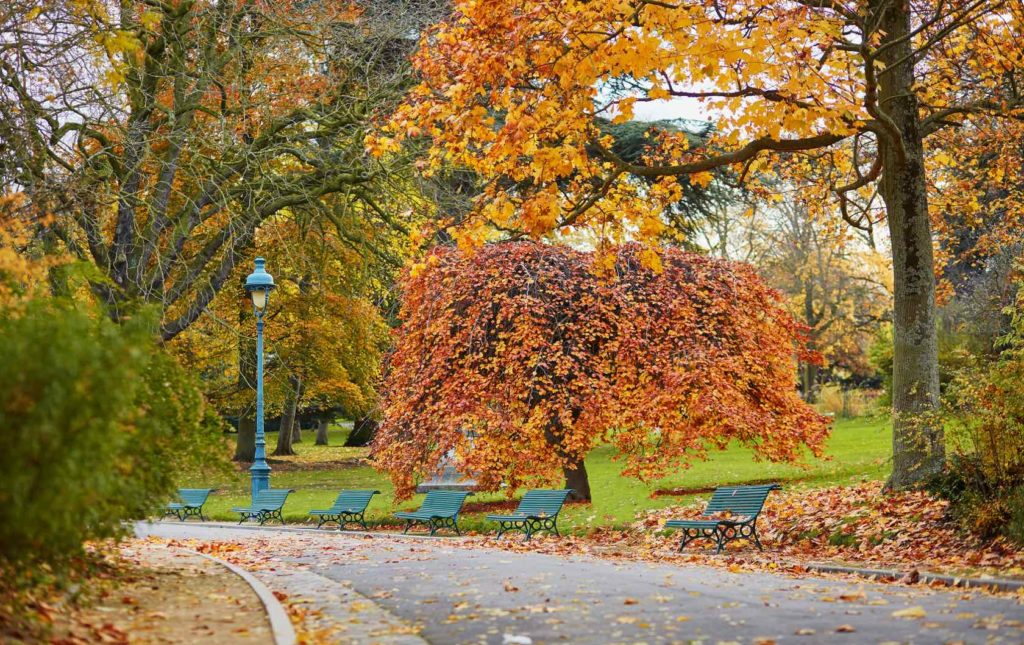 5 Places to see Fall Foliage in Paris by Paris Perfect park in the autumn