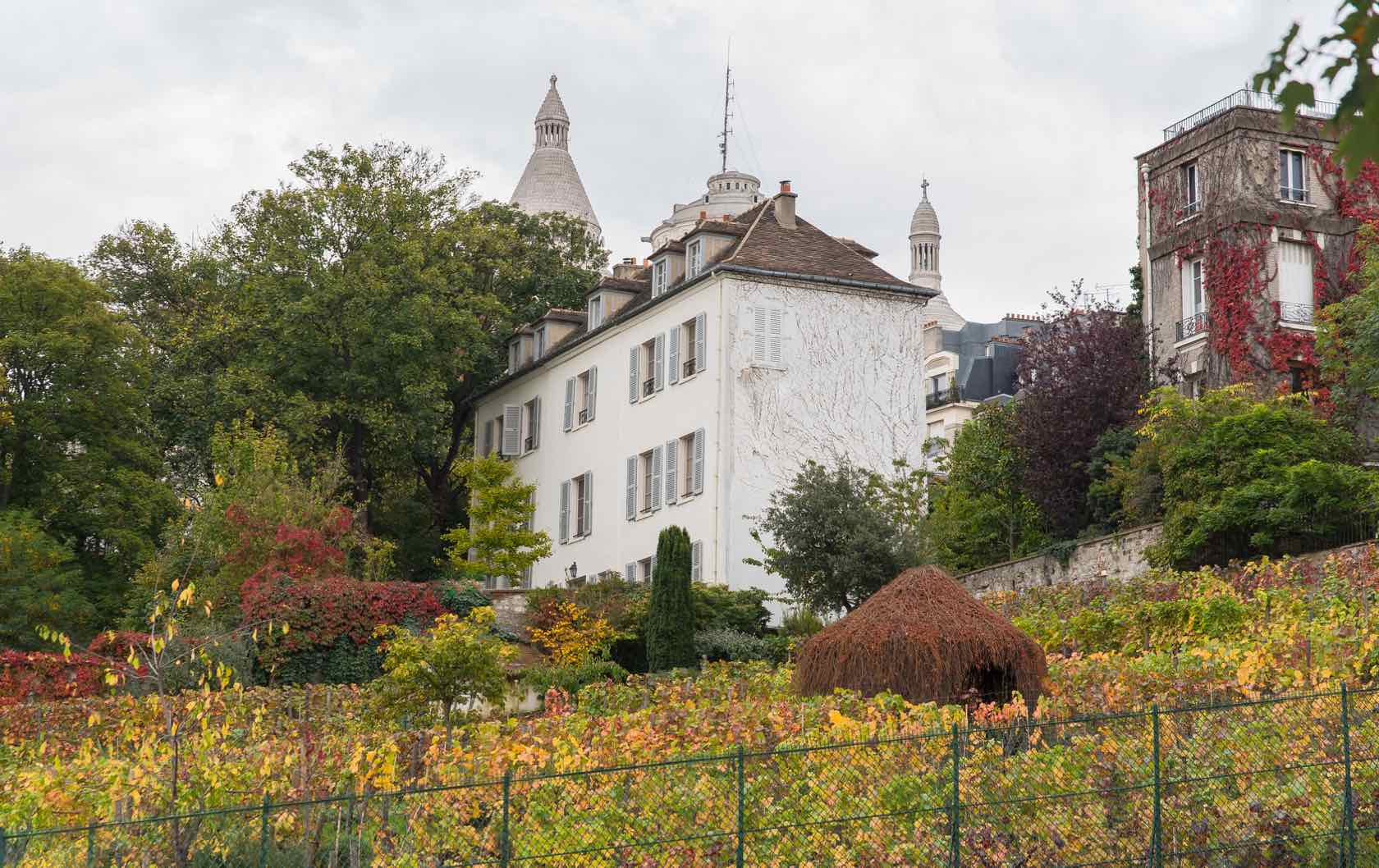 5 Places to see Fall Foliage in Paris by Paris Perfect Montmartre Vineyard