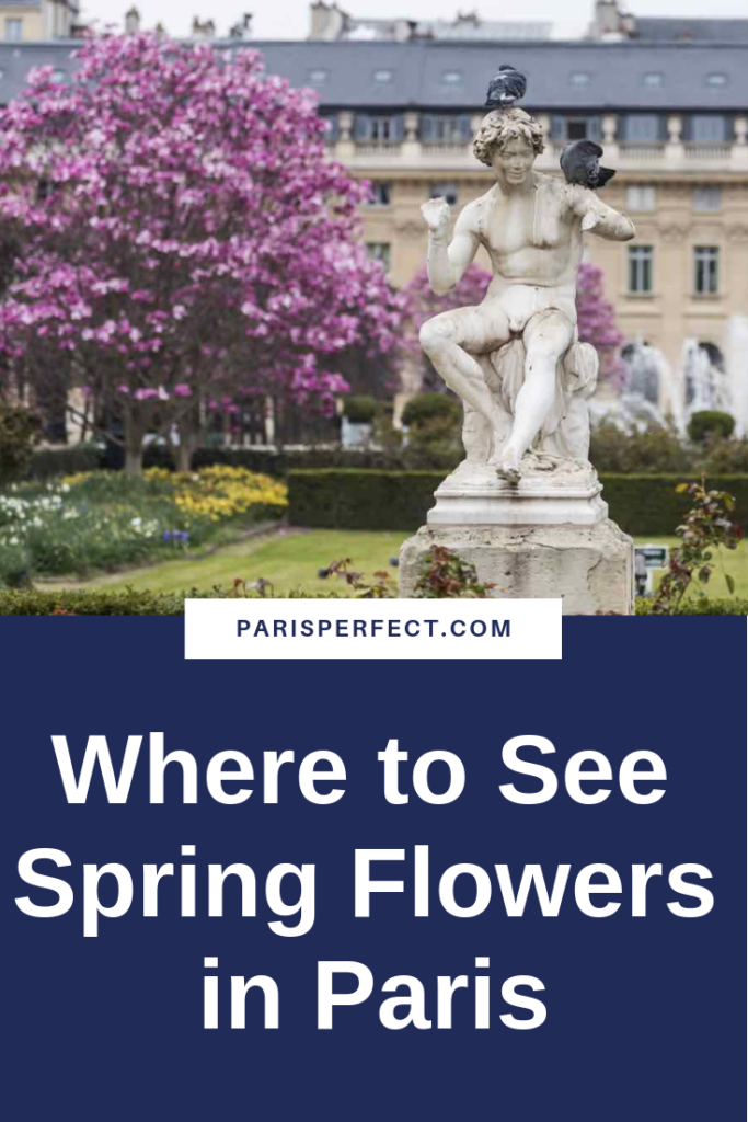 Where to See Spring Flowers in Paris
