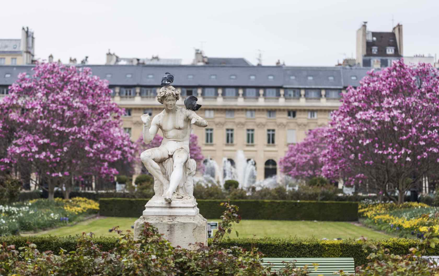 Where to See Spring Flowers in Paris by Paris Perfect Palais Royal Spring