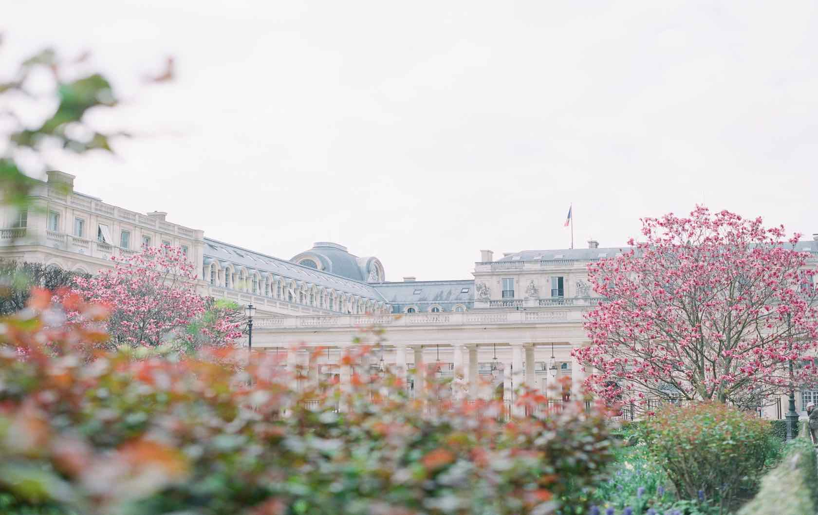Palais-Royal Spring Paris Perfect