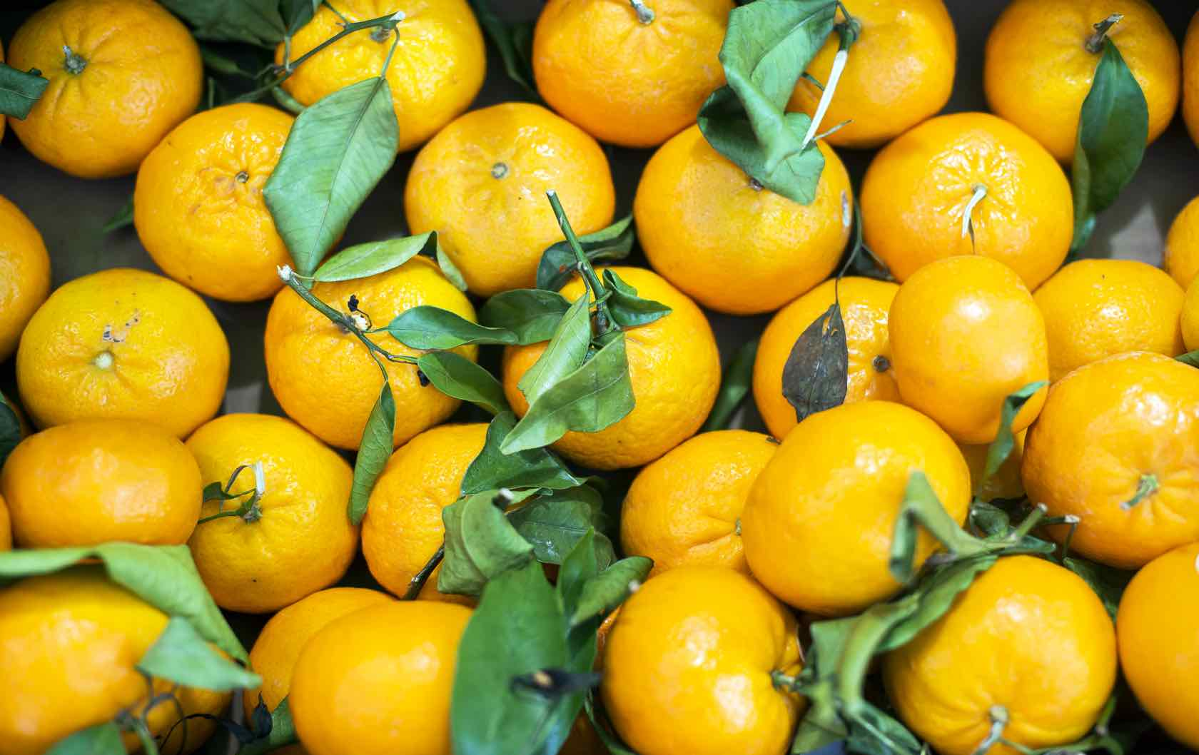 Oranges Market Paris