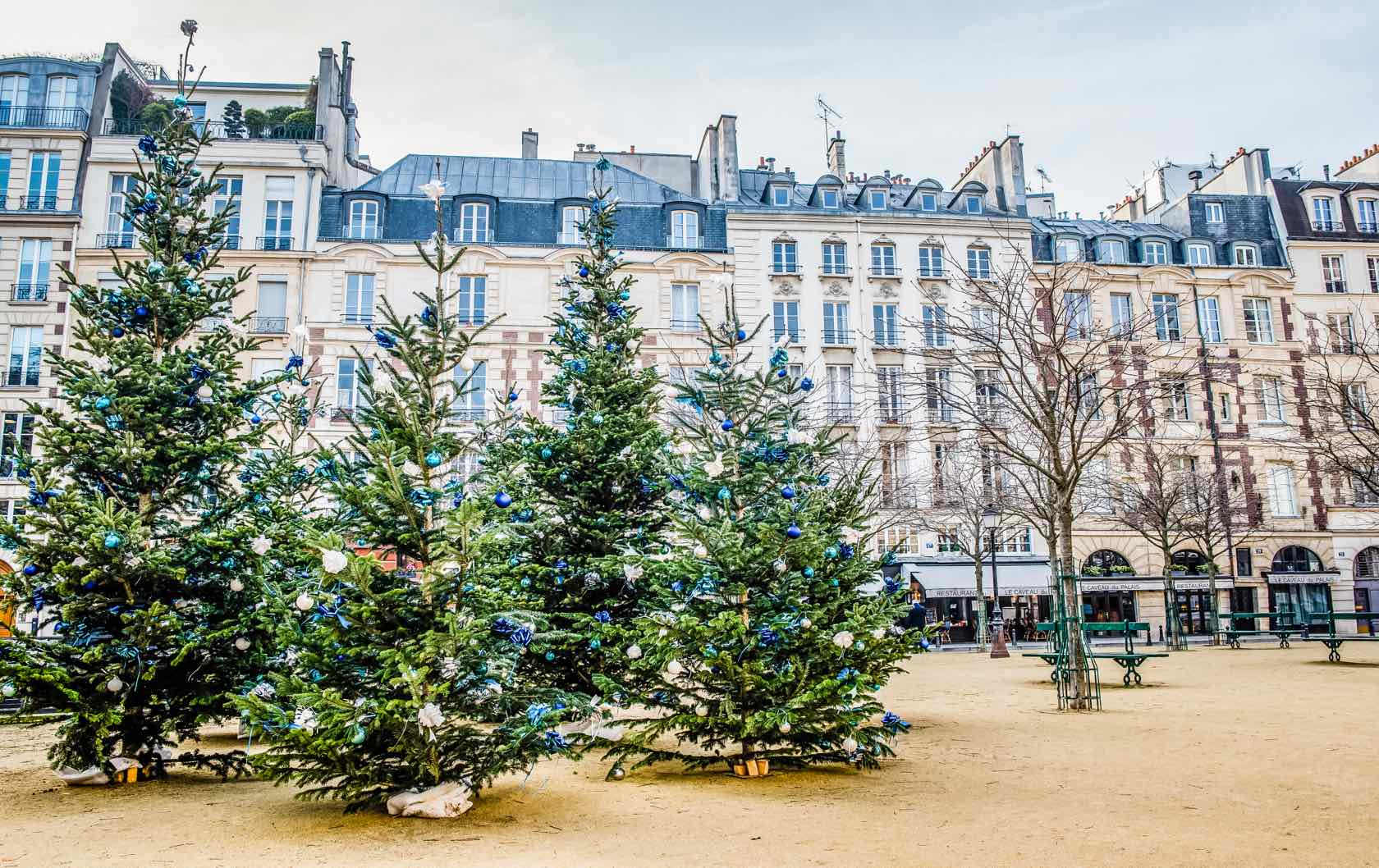 A Guide to Christmas in Paris Place Dauphine Trees