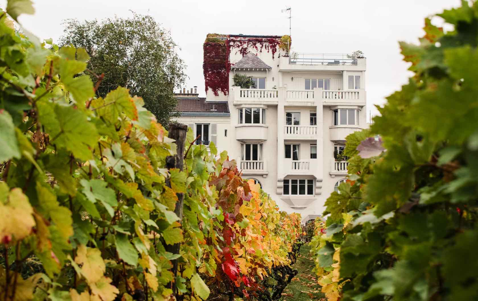 Offbeat Things to See in Paris Le Clos Montmartre