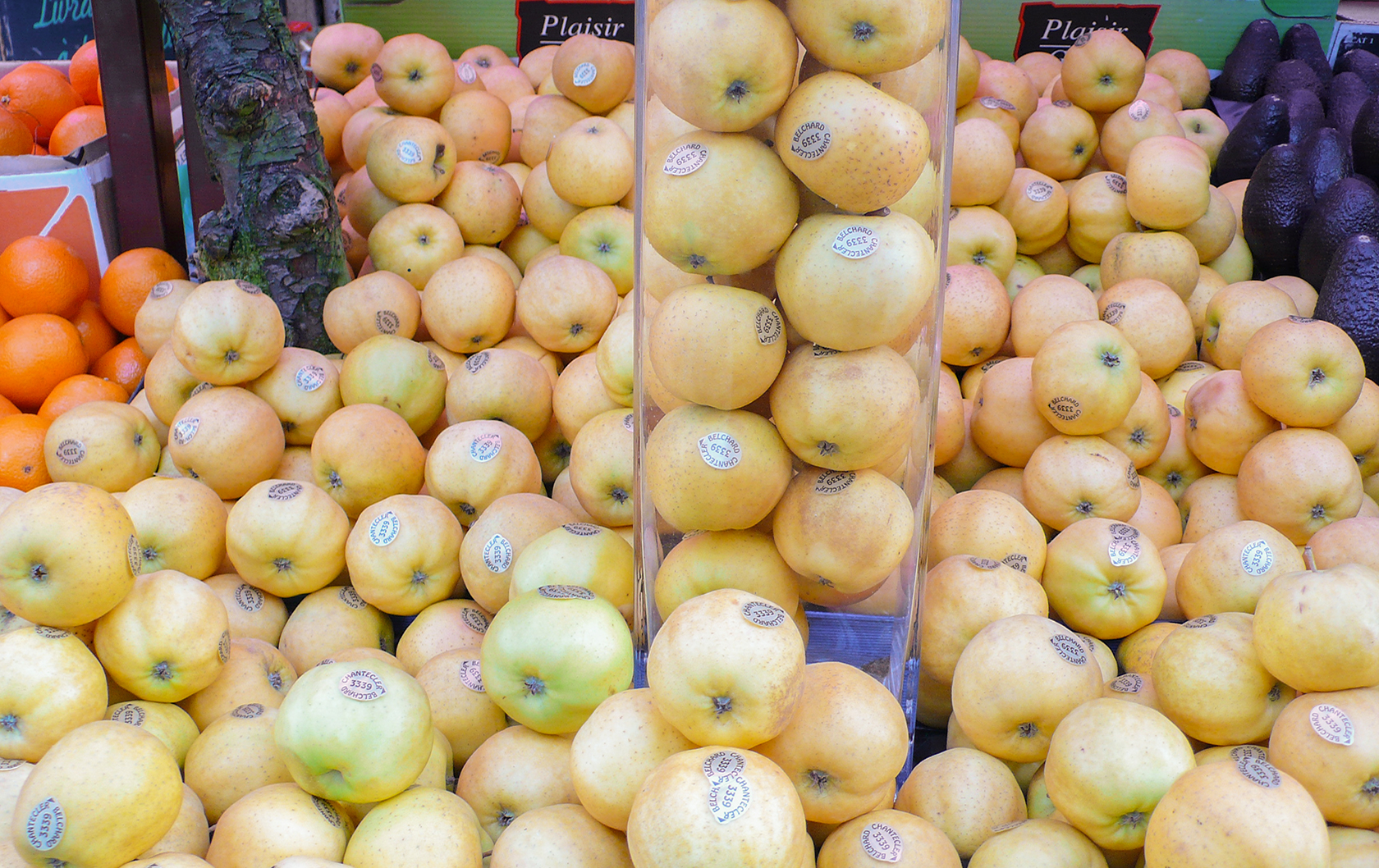 Chantecler apples at Paris market