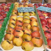 Apples at a Paris market