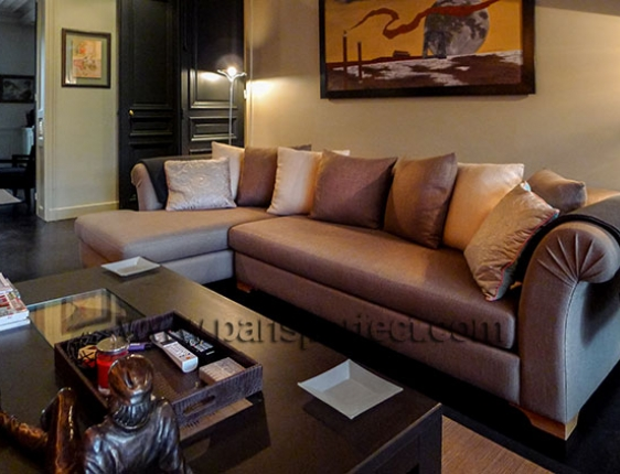 Comfortable designer French sofa in the media room