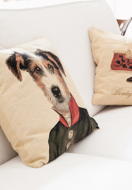 Adorable pillows in the Montagny vacation rental offered by Paris Perfect