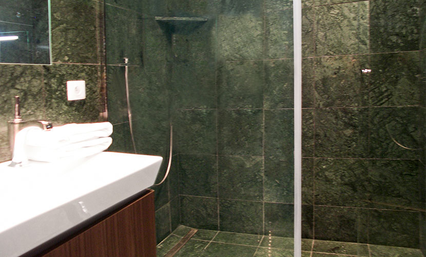 Large step-in shower in the en suite bathroom