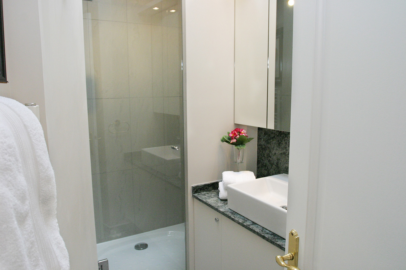 Paris Apartment Bathroom with Shower and Sink