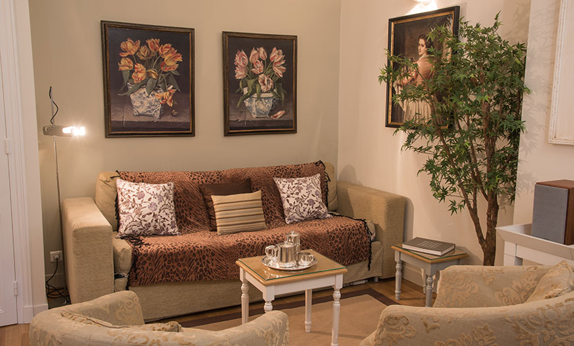 Living Room - Corton Saint Germain Apartment