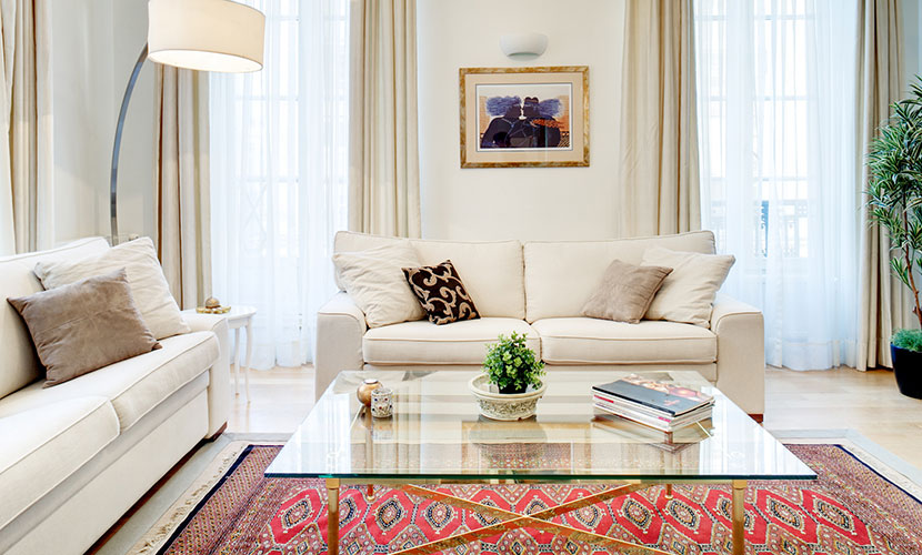 Comfortable Sofas in Paris Apartment