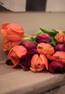 Bouqet Tulips Paris Markets