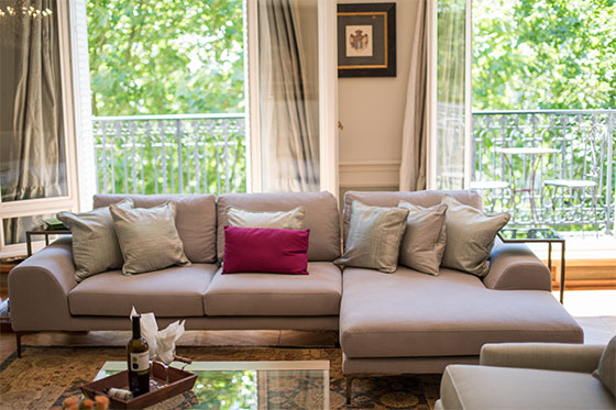 Sofa in Hermitage Apartment in Paris