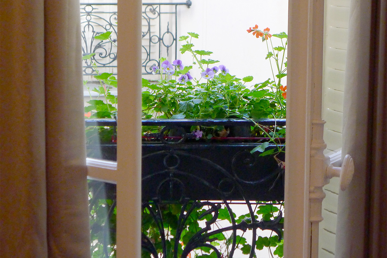 Flowerbox in Window