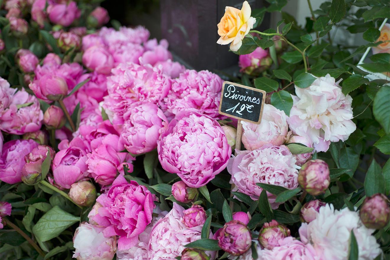 Fresh flowers on display throughout the neighborhood in Paris