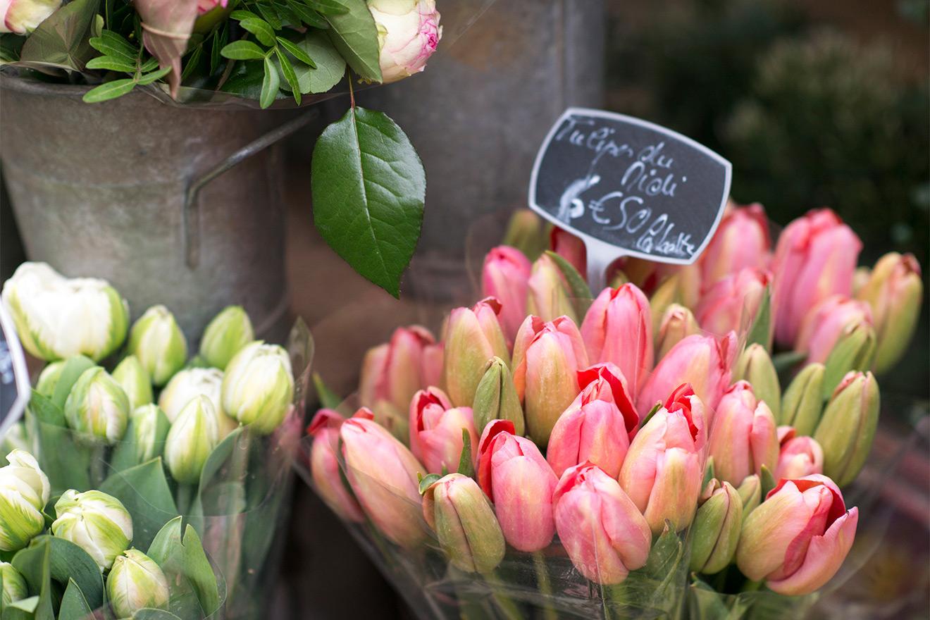 Paris Flower Markets