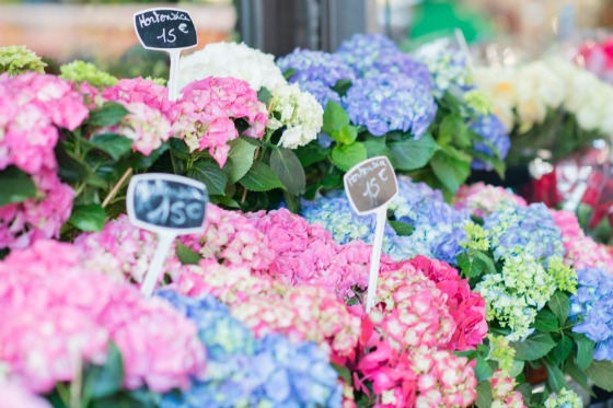 Pick up some fresh cut flowers from a local market