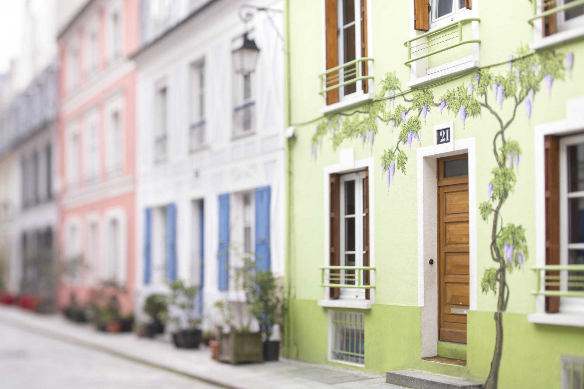 Check out these gorgeous wisterias on rue Crémieux in the Vivarais vacation rental by Paris Perfect