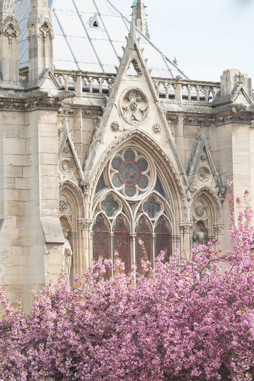 Lovely flowers and the ornate details at Notre Dame are a sight to behold